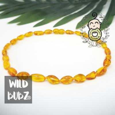Golden Honey | Premium Bean | Baltic Amber | Necklace | Polished | Adult