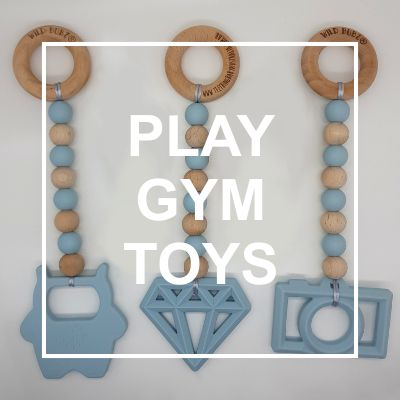 Baby Play Gym Toys